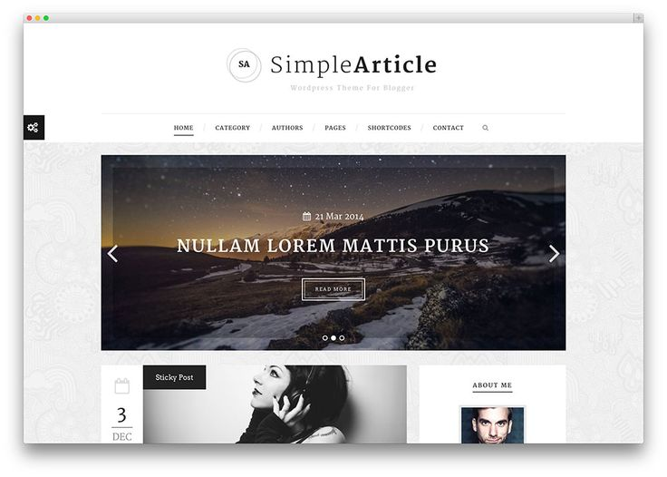 simplearticle impressive theme for bloggers
