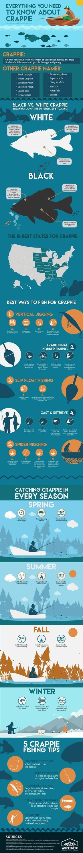 Crappie Fishing Tips - How to Catch White & Black Crappie Infographic