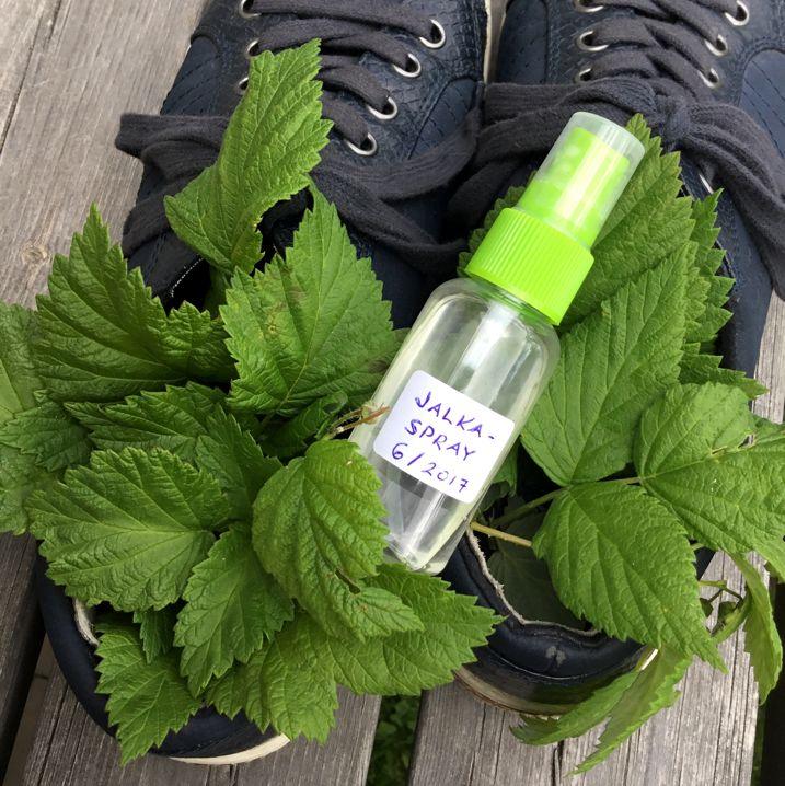 Kesällä jalat hikoilevat ja kenkiä tulee käytettyä ilman sukkia. Jalkoja ja kenkiä raikastavasta suihkeesta on silloin apua. Sprayta voit käyttää myös tunkkaisten kenkien ja muiden varusteiden raikastamiseen. Jalkasprayn valmistaminen Jalat raikkaaksi -suihke   10 ml kasvivettä   10 ml steriloitua vettä (voi korvata kasvivedellä)  15-20 tippaa eteeristä öljyä  1 tippa säilöntäainetta    Laita suppilon avulla nesteet suihkepulloon.  Lisää säilöntäaine esim. pipetillä tai lääkeruiskulla…
