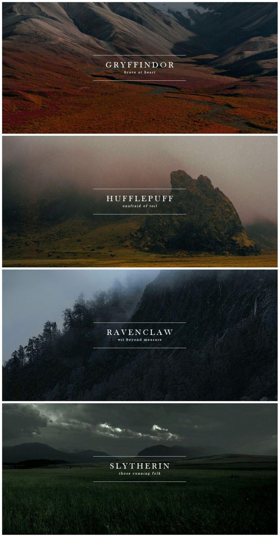 Hogwarts Houses #harrypotter