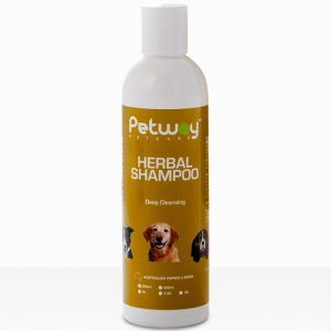 r250hs_herbal-shampoo