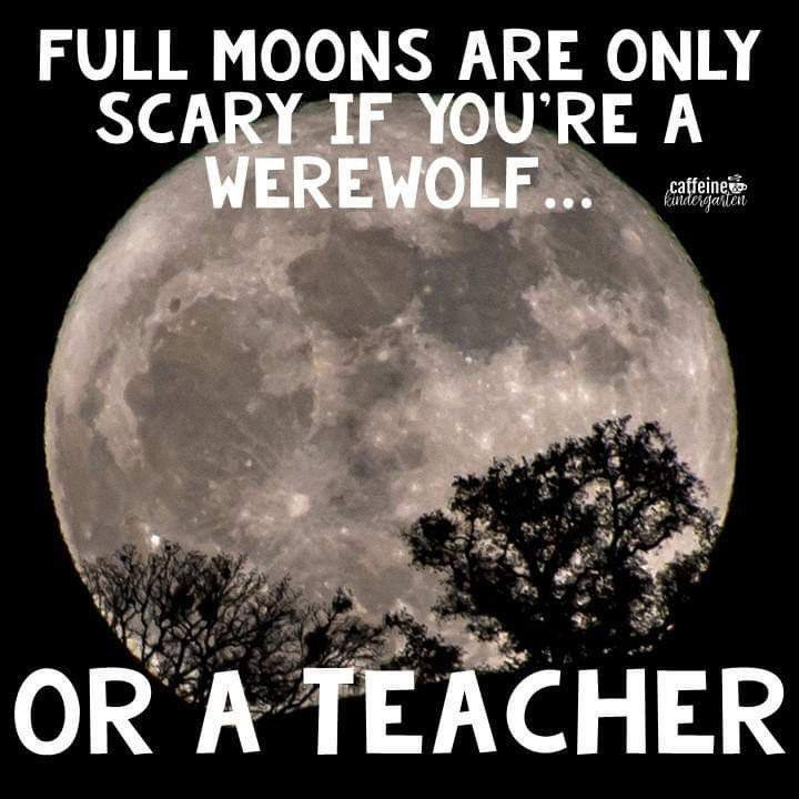 True For The Teacher Then Throw In A Weather Front Teacher Memes Funny Teacher Humor Teacher Quotes Funny
