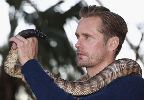 Actor Alexander Skarsgard holds a python during the Legend of Tarzan Photo Call at WILD LIFE Sydney Zoo on June 14, 2016 in Sydney, Australia.