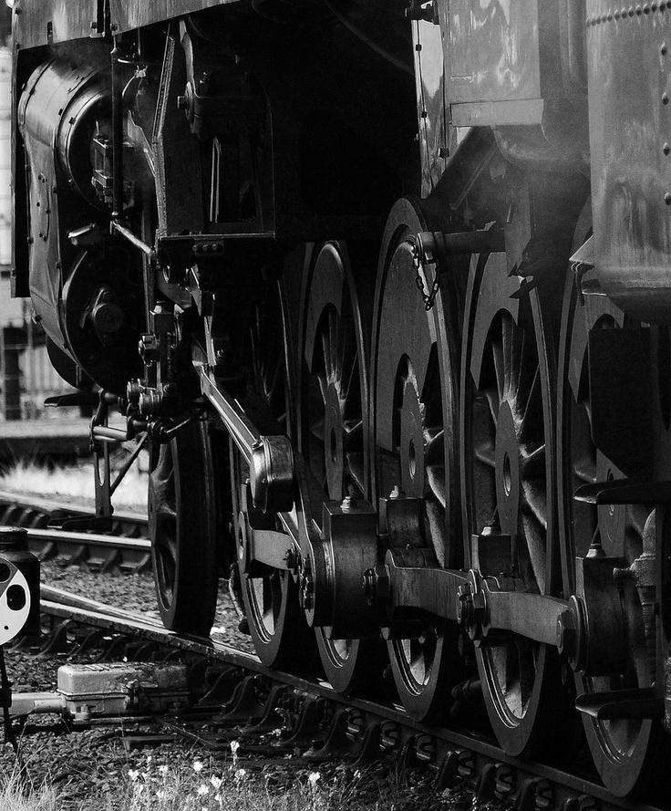 Door de stoommachine veranderde ook het vervoer. De stoomlocomotief en de stoomboot namen de plaats in van paard en wagen.
