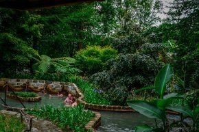 Im Parque Terra Nostra auf Sao Miguel gibt es mehrere heisse Quellen, in denen man Baden kann
