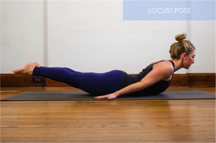 """How Yoga Can Help You Move Through A Harsh Winter -   The snow-filled winter season can often leave us feeling stiff, tight and simply unhappy. Our """"free"""" time is spent shoveling snow, sitting tightly curled up on our couches, or walking around with our shoulders hiked up trying to avoid the blustery wind. Sound familiar?   Although we ca... - http://www.theyogablog.com/yoga-through-harsh-winter/"""