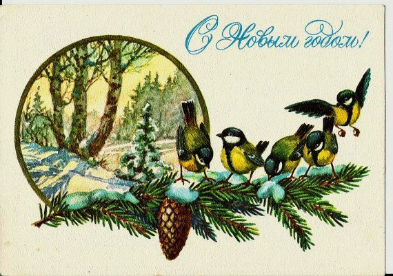 Titmouse in winter  Birds  Vintage  Russian Postcard by LucyMarket