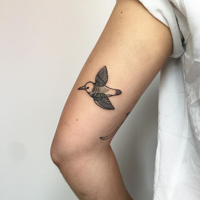 Little tiny bird from the cover of Led Zeppelin III. Thanks Danielle!! . . . . . . .  #tattoo #tattoos #tattooing #tattooartist #blackwork #blackworker #blackworkers  #blacktattooart #tinytattoo #smalltattoo #tattoodesign #birdtattoo #yvr #yvrtattoo #vancouvertattooartist #vancouvertattoos #tattooful #iblackwork