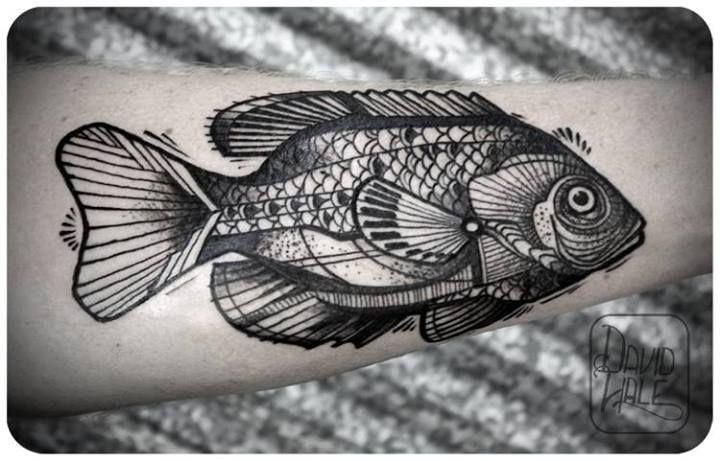 Work of David Hale #fishtattoo #tattoo #encre