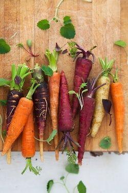 (via carrots | Art of everyday)