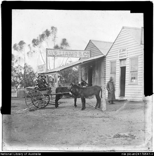Flynn, John, 1880-1951. Donkeys and cart, Blinman, South Australia [transparency] : lantern slide used by Rev. F.H. Paterson, north South Au...