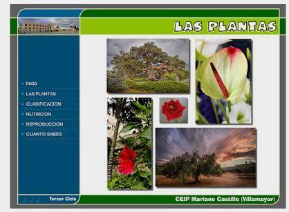BANCO TIC | Las plantas: clasificación, nutrición y reproducción ~ La Eduteca