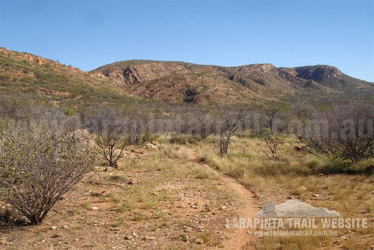 Track Cam: Typical track conditions and scenery along near Jay Creek Trailhead Section 2, Larapinta Trail. © Explorers Australia Pty Ltd 2013