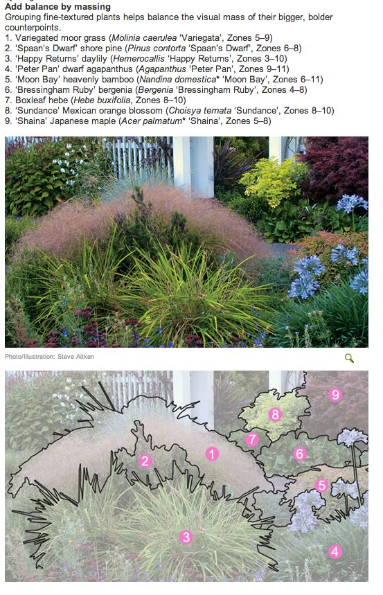 Form And Texture : Images about form and texture on pinterest gardens