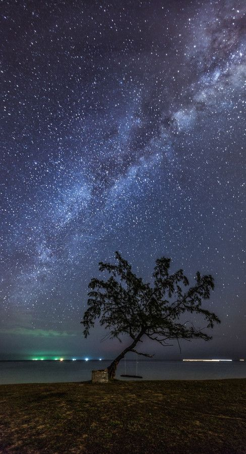 View of a swing on a tree under the milky way at Teluk Bidara, Terengganu, Malaysia  i have to go here!