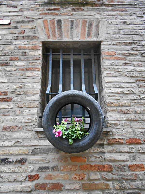 Ogni finestra ha il suo stile... #Recanati #windows #flowers