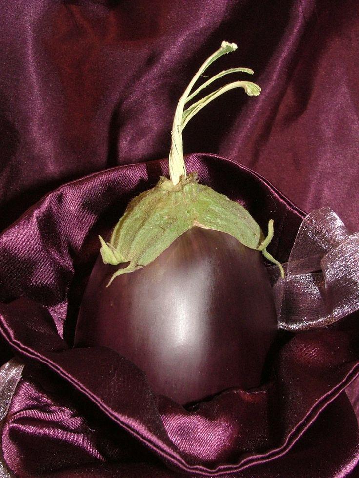 burgundy.quenalbertini: Burgundy color