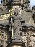 Statue of Saint Blaise at Holy Trinity Column in Olomouc- Take time as Saint Blaise did to find out how you can help wild animals. Find out what is being done to support and protect the wildlife in your area. There is wildlife everywhere, even in cities. Even a birdfeeder can help God's creatures survive.