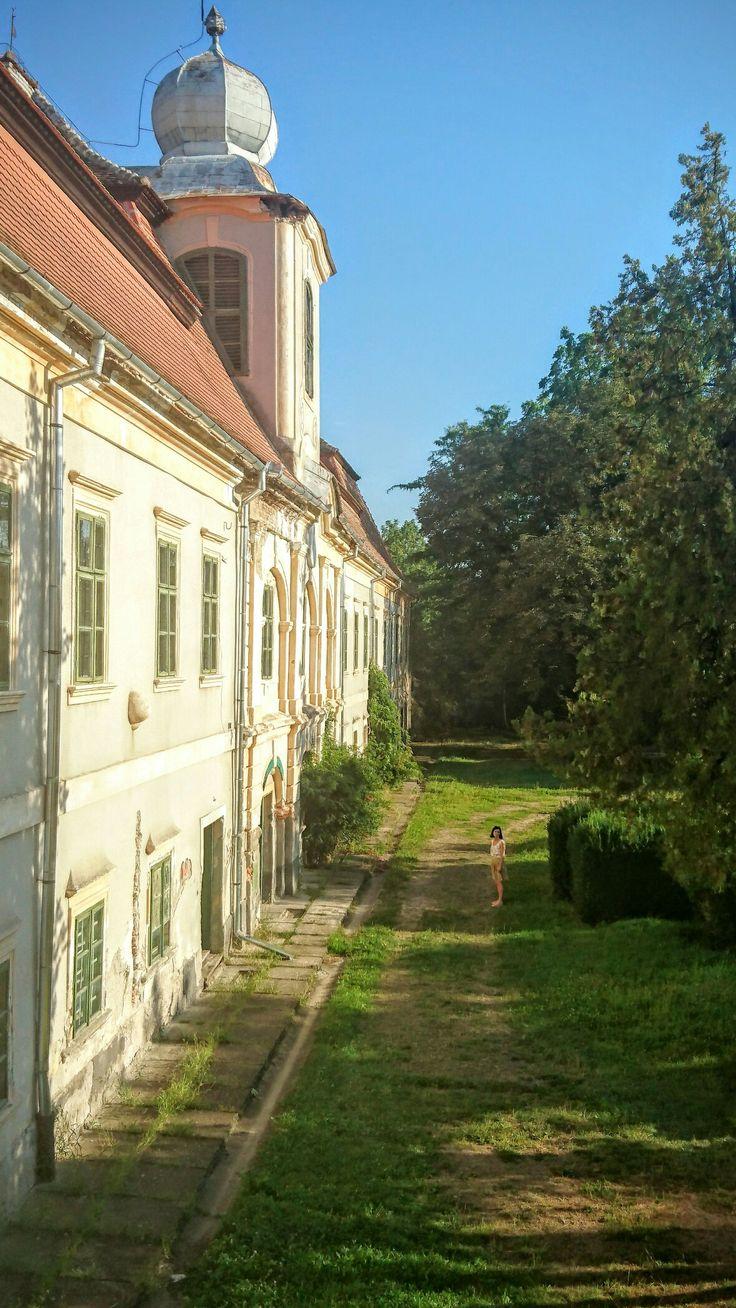 Rakoczi-Bornemisza Castle, Ghurghiului, Mureș County