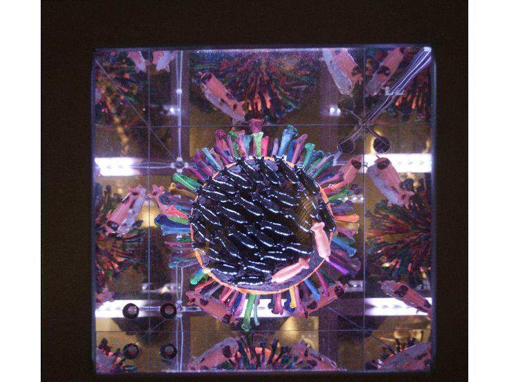 Particolarre Cabinets of Curiosity, Lyndal Osborne, Glenbow, 2015-2016