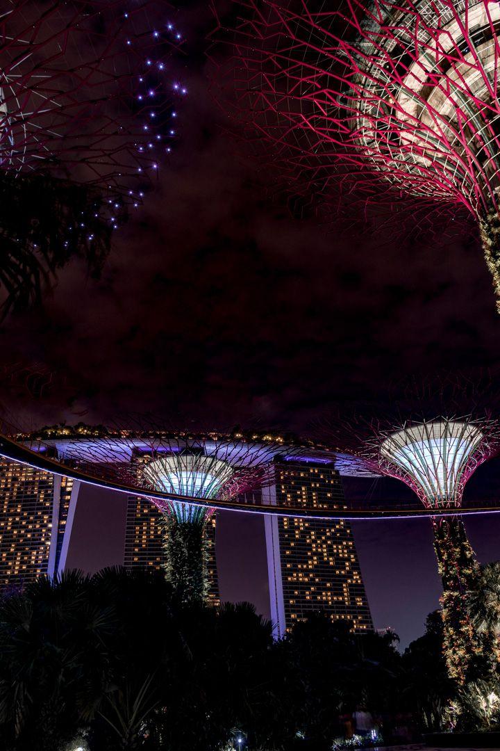 24 Stunden in Singapur - Was muss ich gesehen haben Bart simpson