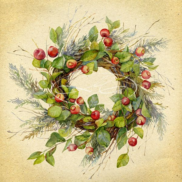 Image wreath of twigs with green leaves and red small apples. Woven decorative branches arborvitae.