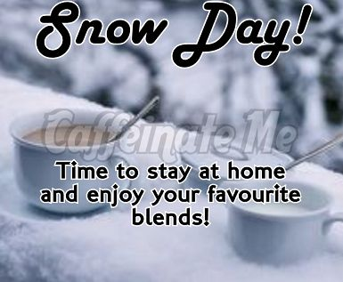 Funny Quotes About Snow Days. QuotesGram