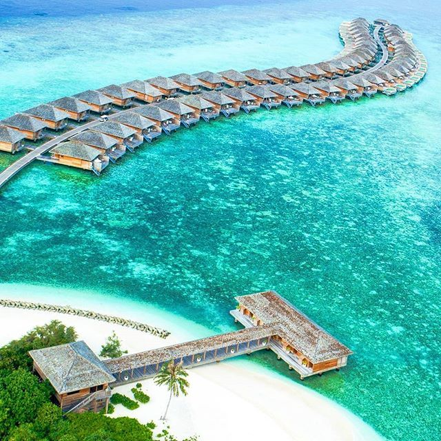 Reposting @widkenempire: Not all those who wander are lost. (@widkenempire)  ____ #maldives #paradise #resort #sea #water #ocean #travel #blue #sky #vacation #beach #beautiful #tropical #relaxation #luxury #love #tourism #nature #landscape #sun #island #relax #palm #hotel #amazing #sand #coast #trip #exotic #widkenempire