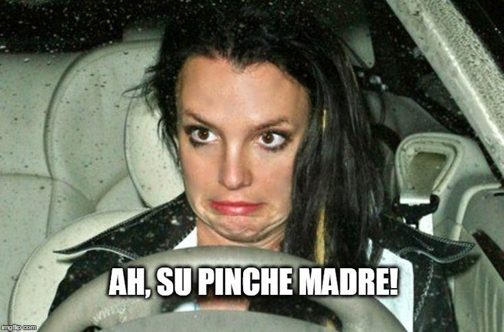 Pinche Madre