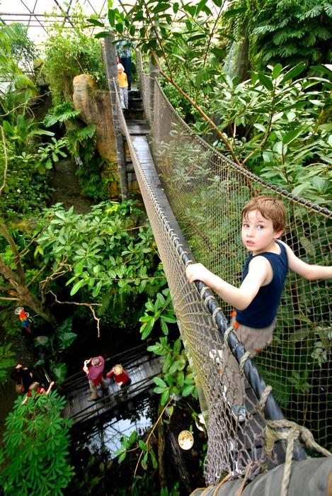 Randers Rainforest