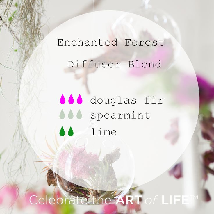 Essential oil diffuser blend with Douglas Fir, Spearmint and Lime. Enchanted Forest Diffuser Blend with dōTERRA essential oils.