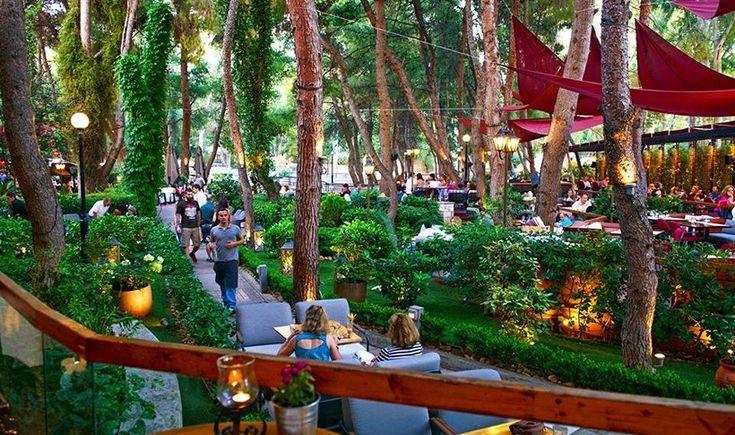 Αθήνα: 8 καταπράσινα cafe για την άνοιξη