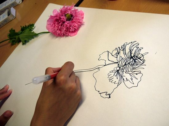 Continuous Contour Line Drawing Definition : 8 best continuous line drawings images on pinterest to draw