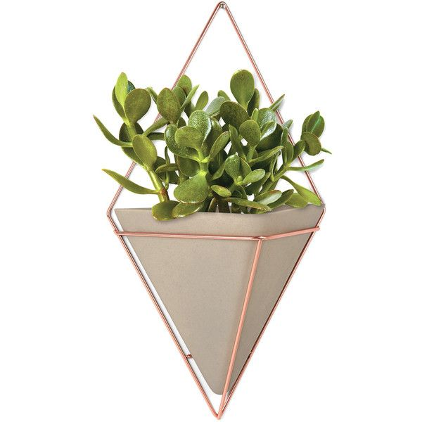 Umbra Trigg Wall Vessel - Large - Copper found on Polyvore featuring home, home decor, copper planter, copper vessel, copper home decor and copper home accessories