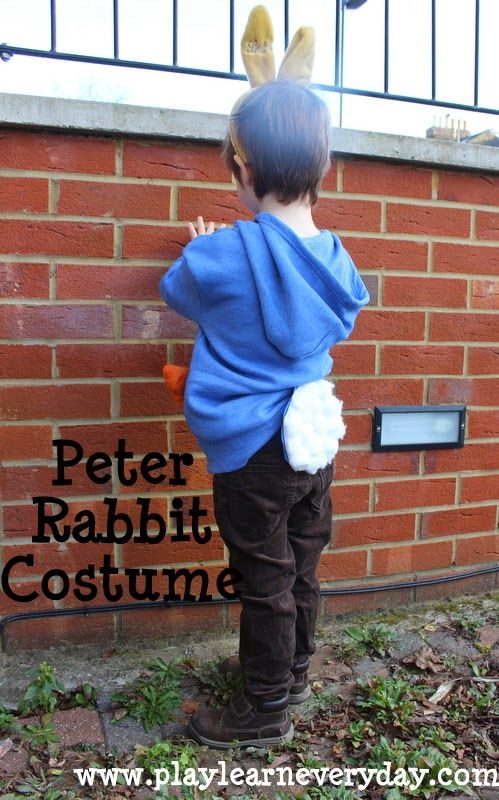 How to make a simple Peter Rabbit costume, no sewing involved for World Book Day or other dress up day.