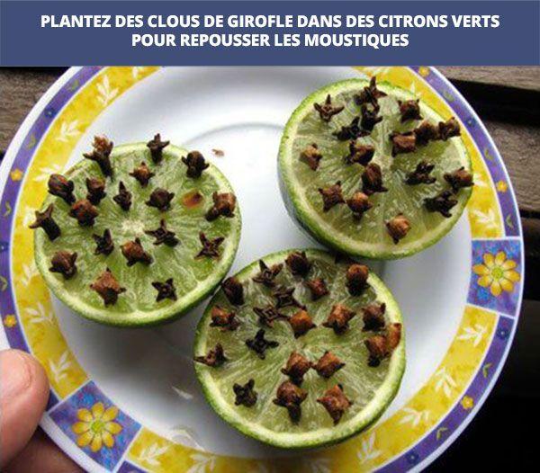 Anti-moustiques ! Citron vert + clous de girofle