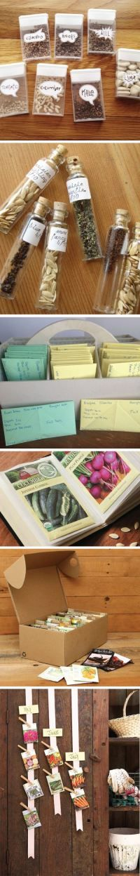 Seed Storage Ideas for gardening and planting!