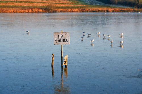 No fishing...