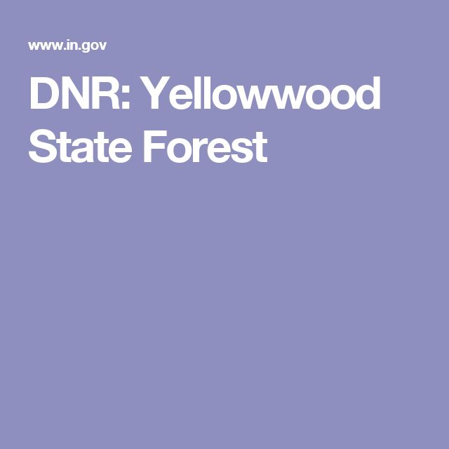 DNR: Yellowwood State Forest