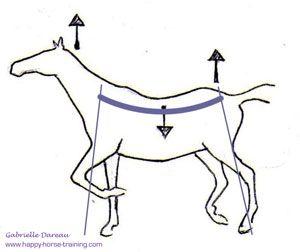 The Whole Horse No. 28 - Building Bridges Inside