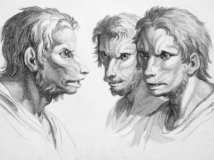 Argentina Has a Superstition That Seventh Sons Will Turn into Werewolves | Smart News | Smithsonian