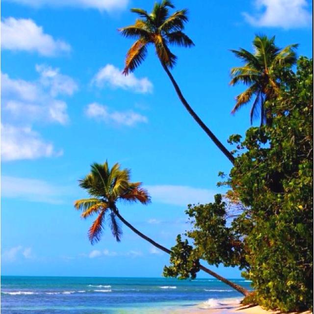 No Passport Needed !Puerto Rico