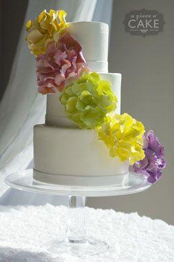Gallery album : wedding - A Piece O' Cake
