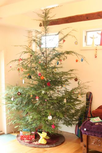 I Love Emily Falconbridges Christmas Tree Its Like A Big Charlie Brown