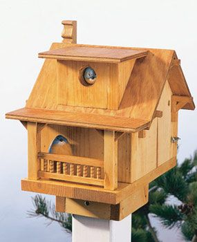 Build a Backyard Birdhouse. A fun-to-build project made with simple tools. Cute birdhouse - looks a bit like a bungalow.