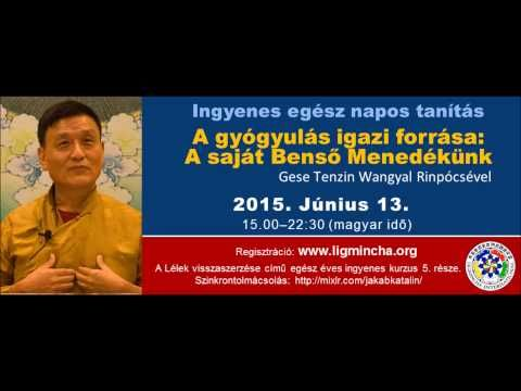 Tenzin Wangyal Rinpócse: A gyógyulás igazi forrása: A saját Benső Menedé...