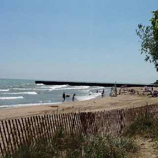 17 Best Images About Around Evanston On Pinterest Trees