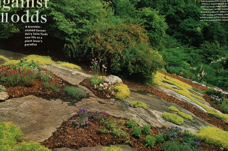 Maher & Greenwald :: Slopes and Rock Gardens Gallery