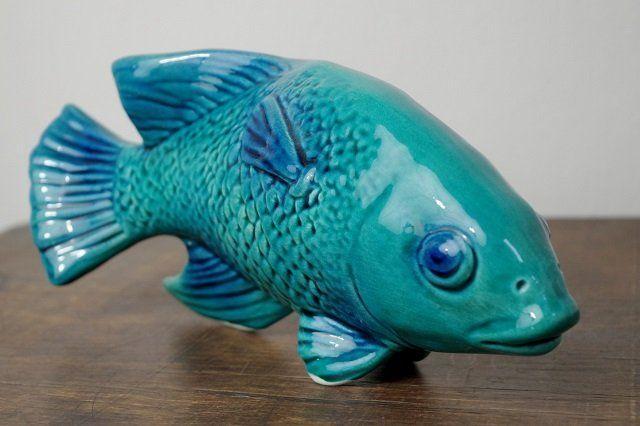 co powie ryba?