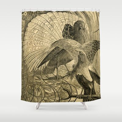 17 Best Images About Dodo Mojo Vintage Images On Shower Curtains On Pinterest Bird Of